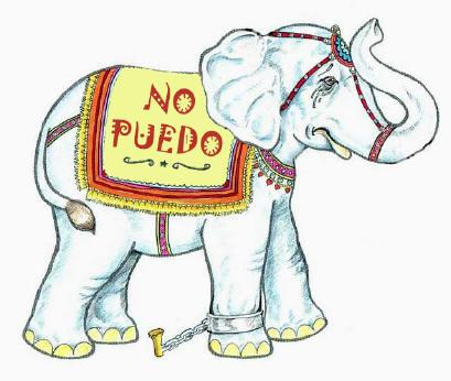 indefension-elefante
